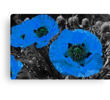 Blue coloursplash poppies Canvas Print