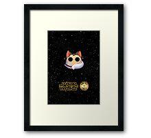 Dana's world of Cats - Purr Wars, rookie jedi Framed Print