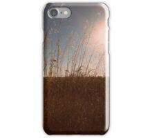 Kansas iPhone Case/Skin