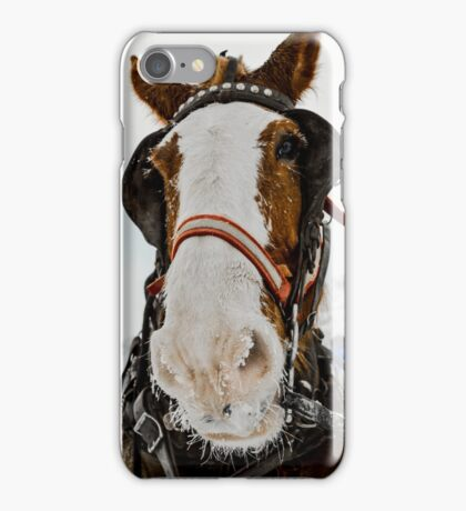 Sleigh Horse w/ Ice Crusted Nose iPhone Case/Skin
