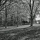 Green Lane Park in Black and White by MotherNature2