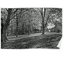 Green Lane Park in Black and White Poster