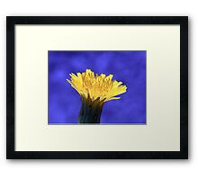 ©NS August Yellow IA. Framed Print