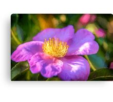 Purple Haze   (vg) Canvas Print