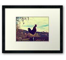 Red Rooster Framed Print