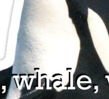 Whale Whale Whale... Sticker Sticker