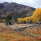 Autumnal Banff by zumi