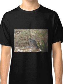 An unwelcome Visitor! Collared Sparrowhawk! Native raptor.  Classic T-Shirt
