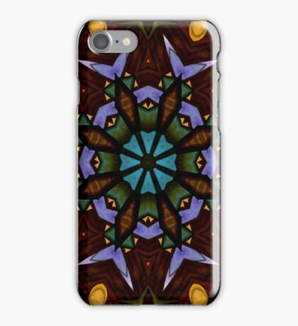 The Wheel of Life iPhone Case/Skin