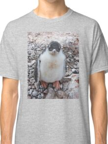 """Gentoo Penguin Chick ~ """"My life's goal....to grow into my feet!"""" Classic T-Shirt"""