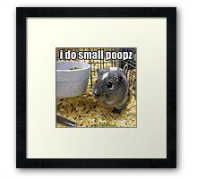 lolz Poopz Hamster Framed Print