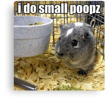 lolz Poopz Hamster Canvas Print