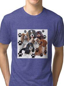 Cavalier Spaniels Grouping Tri-blend T-Shirt