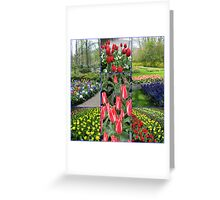 Keukenhof Collage featuring Pinocchio Tulips Greeting Card
