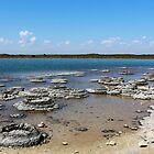 Lake Thetis and  3370 year old Stromatolites by myraj