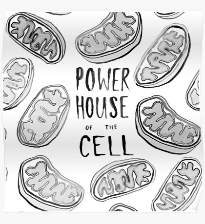 Powerhouse of the Cell  Poster