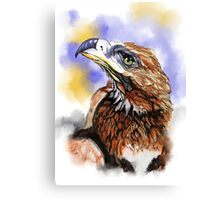Wedgetailed Eagle Australian Bird Canvas Print