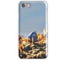Blue soldier crabs iPhone Case/Skin