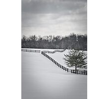 The Color of Winter BW Photographic Print