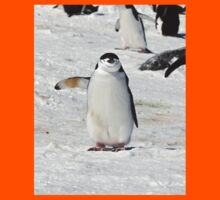 """Chinstrap Penguin  ~  """"Traffic Cop on Point Duty"""" Kids Tee"""
