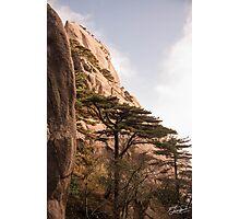 Welcoming Pine Huangshan Photographic Print