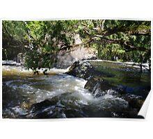 Creekscape Poster