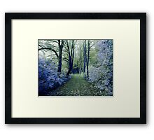 The Enchanted Wood Framed Print