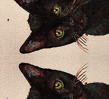 Chat Noir Portrait (Black Bombay Cat painting) No. 2 by CecelyBloom