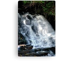 Falls at Springbrook in the Sunlight Canvas Print