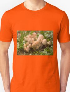 mushrooms in the meadow T-Shirt