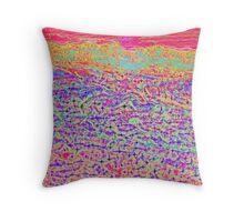 Hucks Lookout - Abstract 2 Throw Pillow