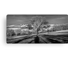 Doulting Hill Panorama Canvas Print