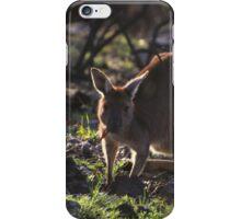 Mt. Lofty Kangaroos Pt.1 iPhone Case/Skin