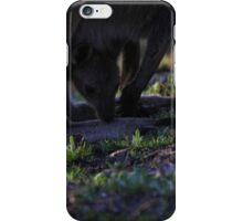 Mt. Lofty Kangaroos Pt.5 iPhone Case/Skin
