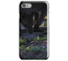 Mt. Lofty Kangaroos Pt.5 iPhone Case/Skin