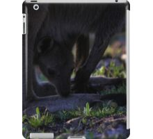 Mt. Lofty Kangaroos Pt.5 iPad Case/Skin