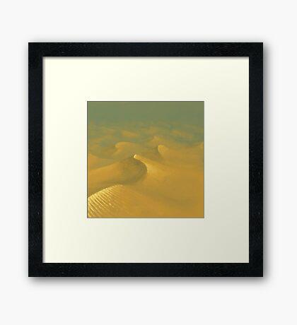 Desert World Framed Print