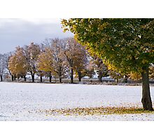 Fall Snow Photographic Print