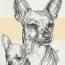 Chihuahua Father & Son (Short-haired) by BarbBarcikKeith