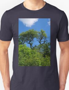 Old lonely tree springtime T-Shirt