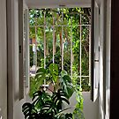 View To The Garden by phil decocco