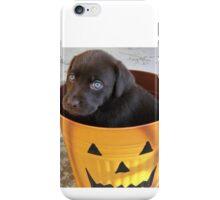 Cutest Chocolate Lab Puppy iPhone Case/Skin