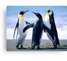 Penguin Freinds Animal Designs Canvas Print
