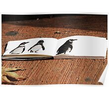 Penguins on Paper Poster