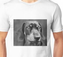 Portrait of a daschund Unisex T-Shirt