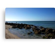 The Fishers  Canvas Print