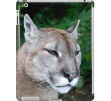 Portrait Of A Puma iPad Case/Skin