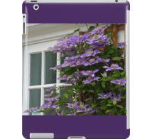Window Dressing-   Dorset-Uk iPad Case/Skin