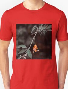 Holding on or letting go? Unisex T-Shirt