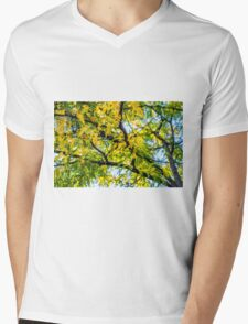 Where Summer Meets Fall Mens V-Neck T-Shirt